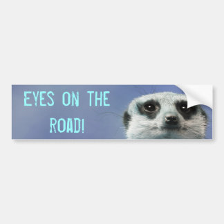 Eyes on the Road Meerkat Car Bumper Sticker