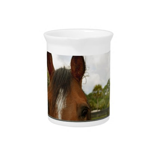 eyes over fence horse head beverage pitchers