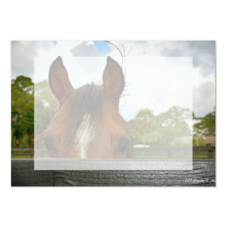 eyes over fence horse head card