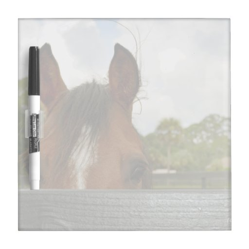 eyes over fence horse head dry erase board