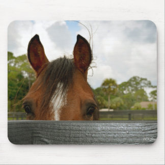 eyes over fence horse head mouse pad
