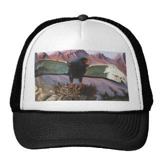 Eyrie Trucker Hat