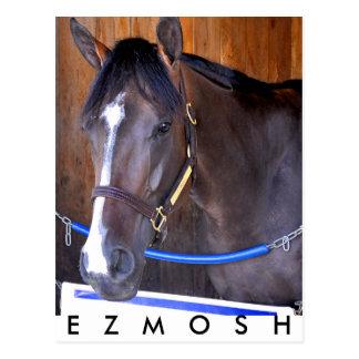 Ezmosh Postcard