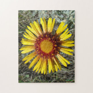 F0001 Yellow Wildflower Puzzles