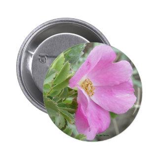 F0004 Alberta Wild Rose light pink button