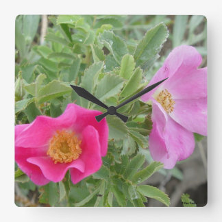F0004 Wild Roses Square Wall Clock