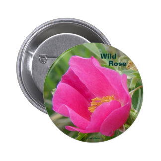 F0007 Alberta Wild Rose button