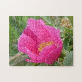 F0007 Wild Rose Jigsaw Puzzle