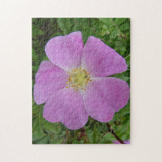 F0011 Prairie Wild Rose (Rosa Arkansana) Puzzle