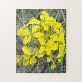 F0014 Small Yellow Wildflowers Puzzles
