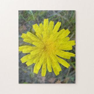F0016 Yellow Wildflower King Devil Jigsaw Puzzles
