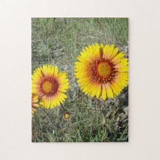 F0017 Yellow Wildflower Gaillardia Puzzle