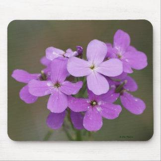 F0019 Purple Wildflower/Dames-rocket mouse pad
