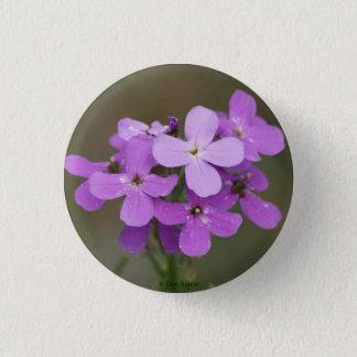 F0019 Purple Wildflowers Dames Rocket Pinback Button