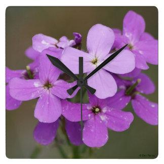 F0019 Purple Wildflowers Dames Rocket Square Wall Clock