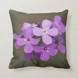 F0019 Purple Wildflowers Dames Rocket Throw Pillow