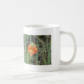 F0040 Orange Wildflowers Scarlet Mallow Classic White Coffee Mug