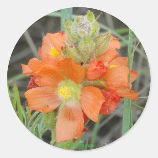 F0040 Orange Wildflowers Scarlet Mallow Classic Round Sticker