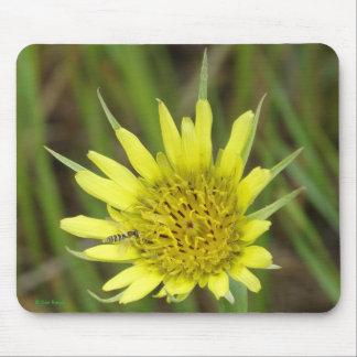 F0041 Yellow Wildflower Goats-beard Mouse Pad