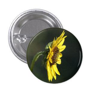 F0043 Yellow Wildflower Black-eyed Susan 1 Inch Round Button