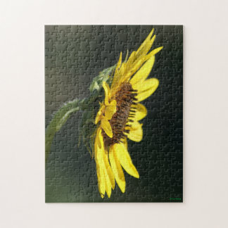 F0043 Yellow Wildflower Black-eyed Susan Puzzle