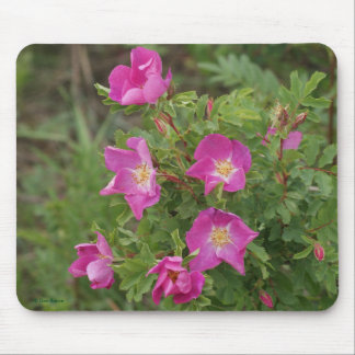 F0046 Wild Roses Mouse Pad