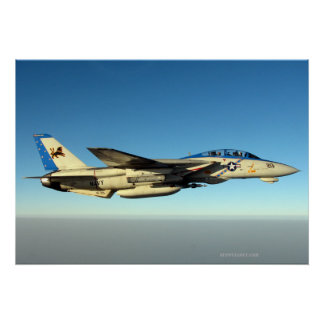 F14 of the Bloack Lions Print