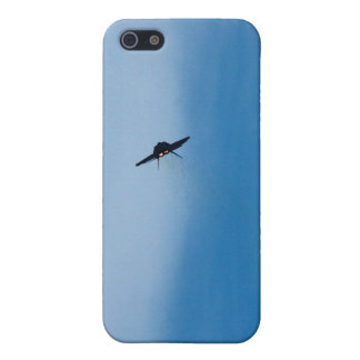 F22 Raptor photo iPhone cases iPhone 5 Covers