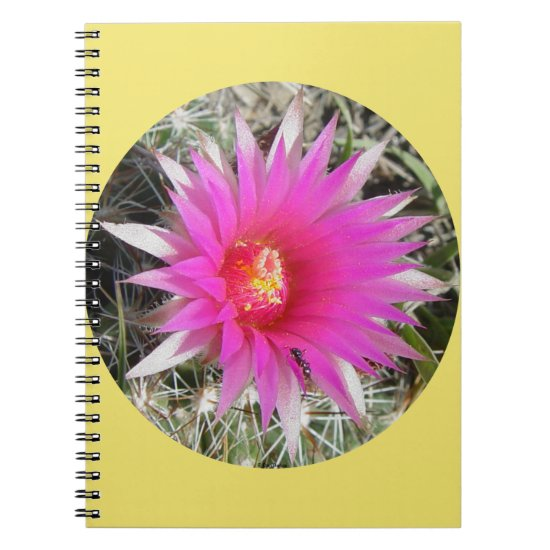 "F29 Ball Cactus Flower ""Escobaria vivipara"" Notebook"