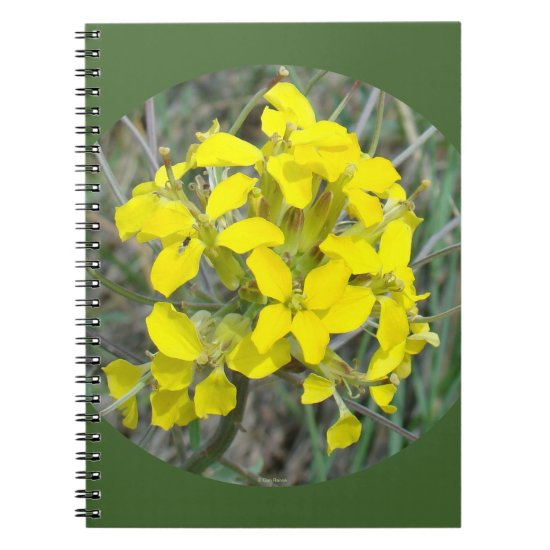 F33w Yellow Wildflowers Notebook
