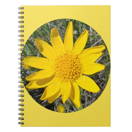 F36wma Yellow Wildflowers Sneezeweed Notebook