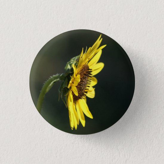 F43 Yellow Wildflower Black-eyed Susan Pinback Button