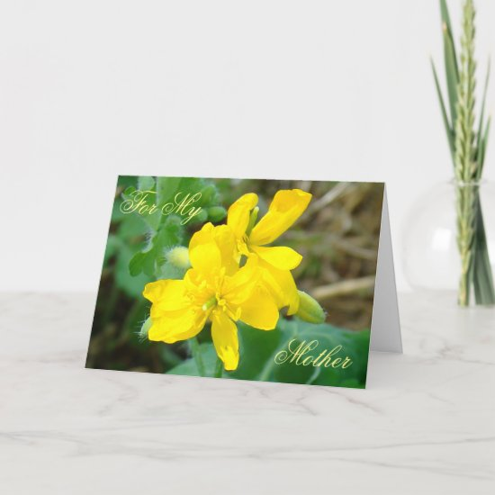 F44 Yellow Wildflowers Wild Mustard Card