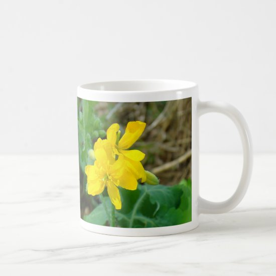 F44 Yellow Wildflowers Wild Mustard Coffee Mug