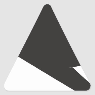 F-117 Stealth Fighter Triangle Stickers
