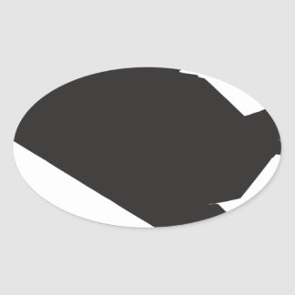 F-117 Stealth Fighter Oval Sticker