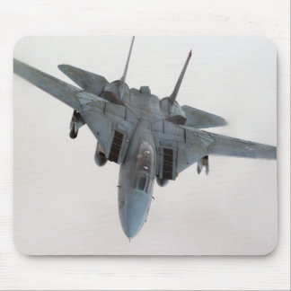 F-14 TAPETE DE RATONES