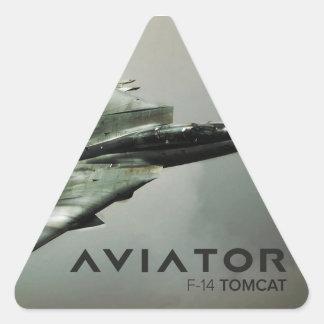 F-14 Tomcat Jet Fighter Triangle Sticker