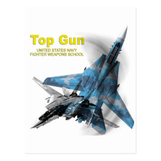 F-14 Tomcat Top Gun Postcard