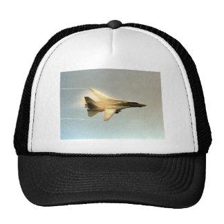 F-14 TOMCAT WITH VAPOR TRUCKER HAT