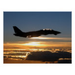 F-14D Tomcat Impresiones