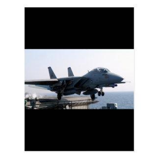 F-14D VF-213 WORLD FAMOUS BLACK LIONS POSTCARD