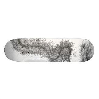 F#1 (details) skateboard