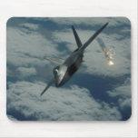 F-22 ALFOMBRILLA DE RATON