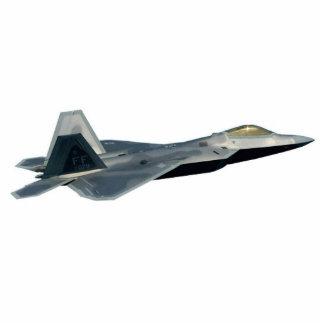 F-22 Raptor Cutout