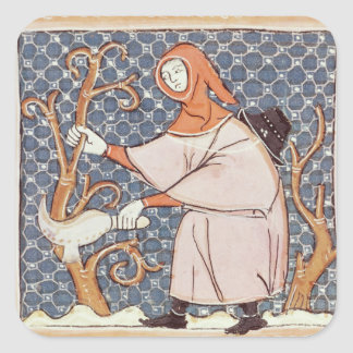 F.58v March: Pruning trees Square Sticker