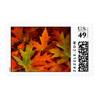 F all leaves postage stamp 1