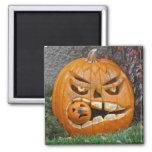F�tons Halloween - Magnet