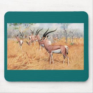 F.W. Kuhnert - Grant's Gazelle Mouse Pad