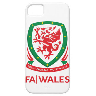 FA Wales iPhone SE/5/5s Case